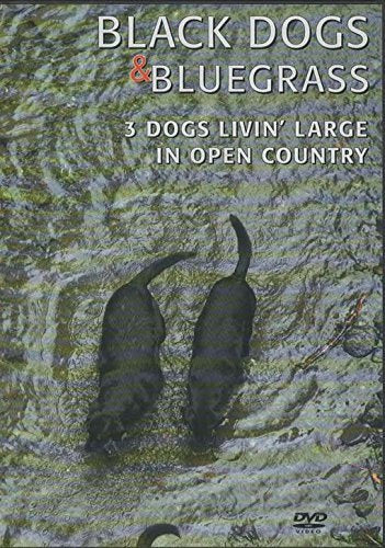 Black Dogs & Bluegrass: 3 Dogs Livin' Large In Open Country