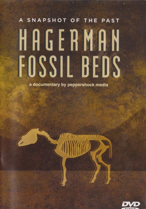 Hagerman Fossil Beds: A Snapshot Of The Past