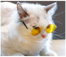 Load image into Gallery viewer, Boujee Cat Glasses
