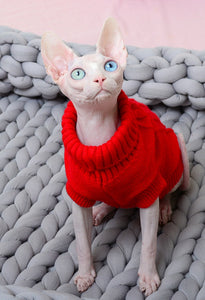 Cat Turtle Neck