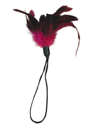 Sportsheets Pleasure Feather - Rose