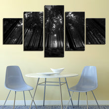 Black Forest Trees 5 Piece HD Multi Panel Canvas Wall Art Frame