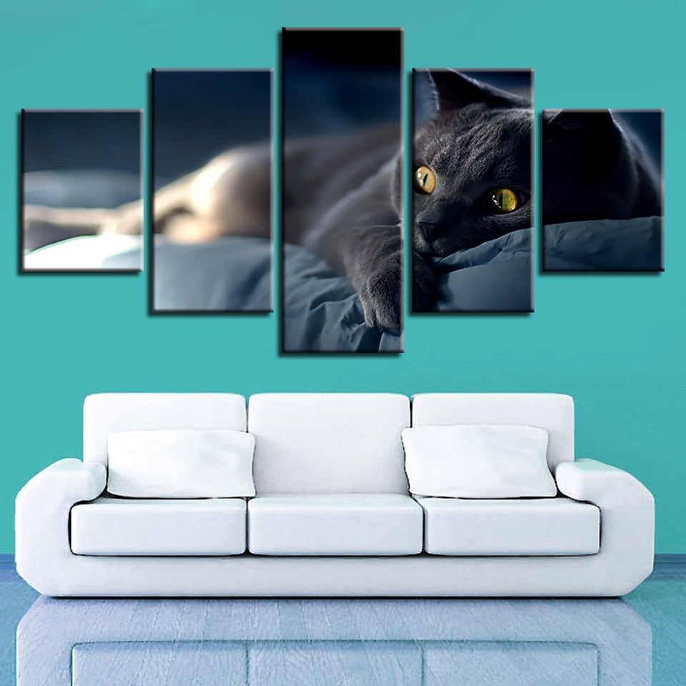 Lazy Grey Cat 5 Piece HD Multi Panel Canvas Wall Art Frame