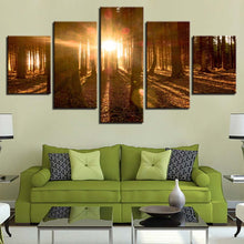 Forest Light 5 Piece HD Multi Panel Canvas Wall Art Frame