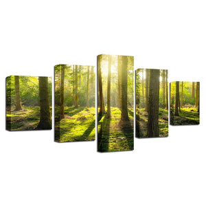 Sunlit Woods 5 Piece HD Multi Panel Canvas Wall Art Frame