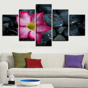 Lily And Stones 5 Piece HD Multi Panel Canvas Wall Art Frame