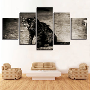 Tabby Cat 5 Piece HD Multi Panel Canvas Wall Art Frame