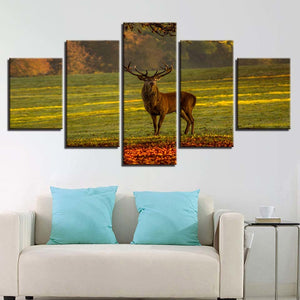 Beautiful Male Deer 5 Piece HD Multi Panel Canvas Wall Art Frame