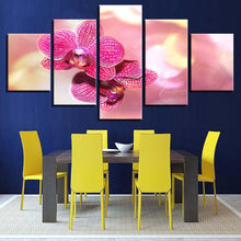 Pink Moth Orchid Flower 5 Piece HD Multi Panel Canvas Wall Art Frame