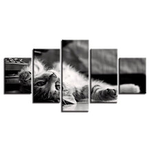 Lovely Tabby Cat 5 Piece HD Multi Panel Canvas Wall Art Frame