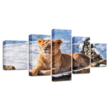 Lioness Resting 5 Piece HD Multi Panel Canvas Wall Art Frame