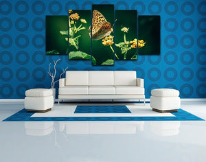 Beautiful Butterfly 5 Piece HD Multi Panel Canvas Wall Art Frame