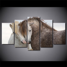 White And Black Horses Couple 5 Piece HD Multi Panel Canvas Wall Art Frame