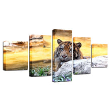 Majestic Tiger 5 Piece HD Multi Panel Canvas Wall Art Frame