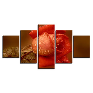 Orange Rose 5 Piece HD Multi Panel Canvas Wall Art Frame