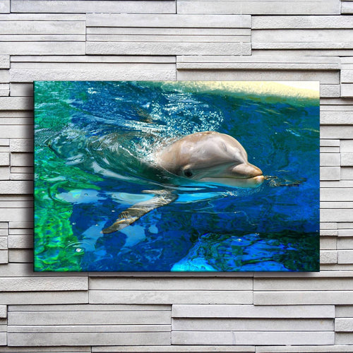 Dolphin In Water 1 Piece HD Multi Panel Canvas Wall Art Frame