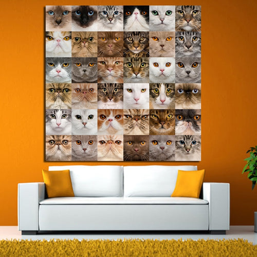 Cute Cats 1 Piece HD Multi Panel Canvas Wall Art Frame