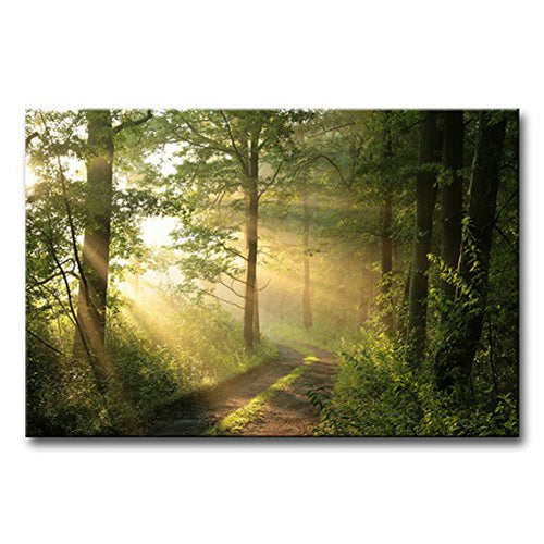 Spring Morning 1 Piece HD Multi Panel Canvas Wall Art Frame