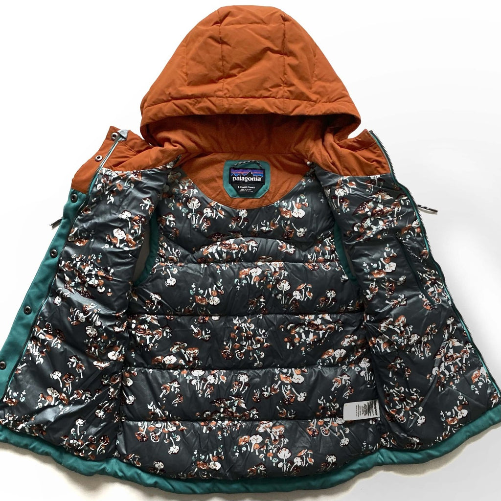 Patagonia Bivy Hooded Down Vest