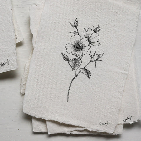 Original Drawing {Wild Rose} no 2.