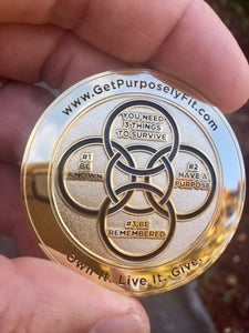 PF CHALLENGE COIN