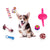 15 Pcs Variety Pack Dog Toy Non-toxic Multiple types of Pet accessories