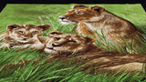 Cotton Fabric Panel - Lions laying in the Grass - Christina's Fabrics Online Superstore
