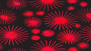Batik Fabric Dandelion Bloom, Red, Black, by Shania Sunga - Christina's Fabrics Online Superstore