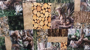 Cotton Fabric In Green Friends of the Forest - Northcott - Christina's Fabrics Online Superstore