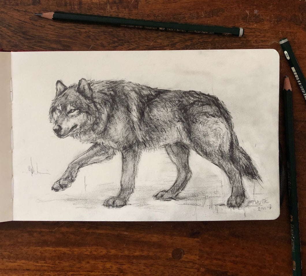 Wolf drawing - 5.5x8.25
