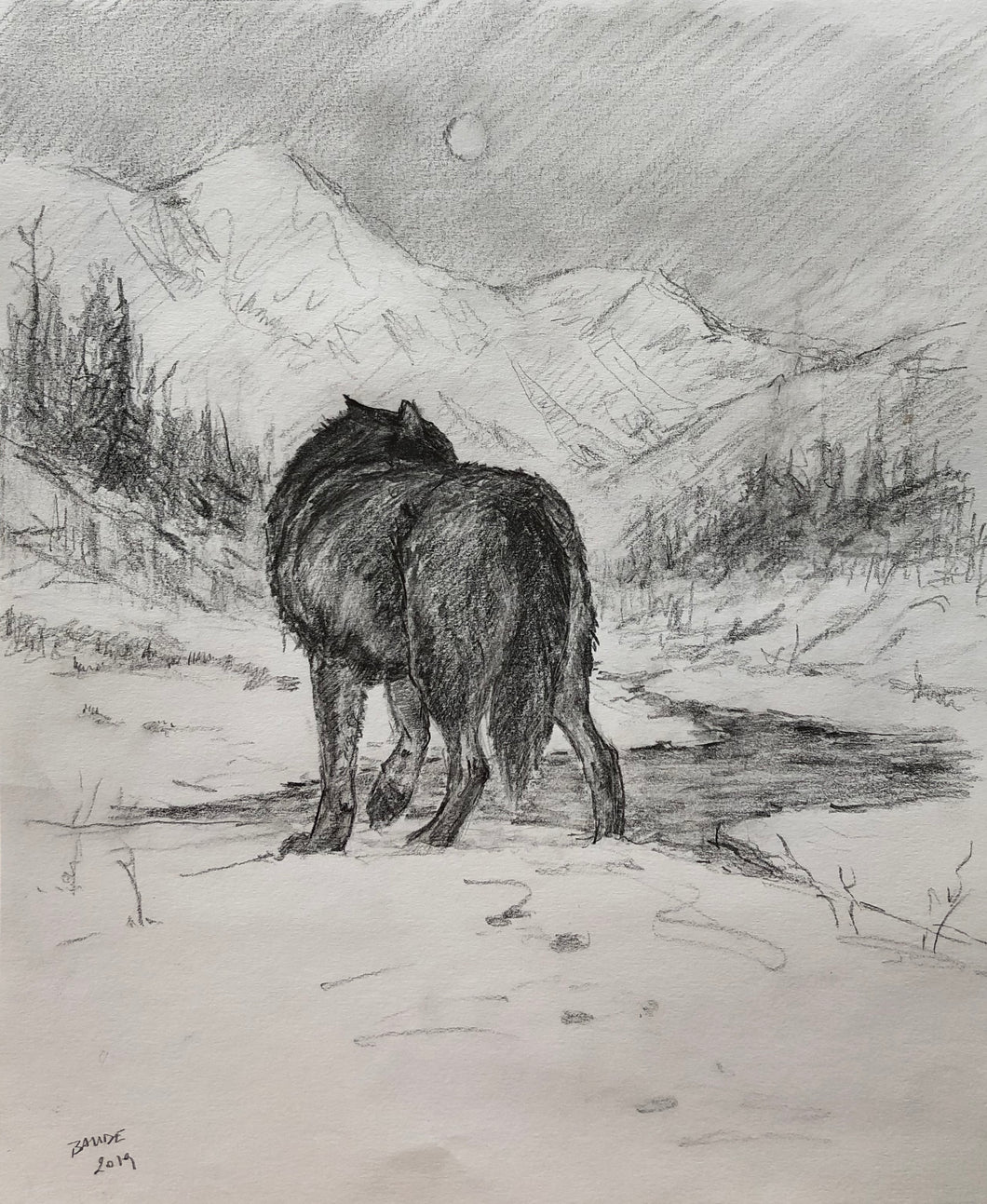 Original Drawing - Wolf in wilderness - 9.5x11