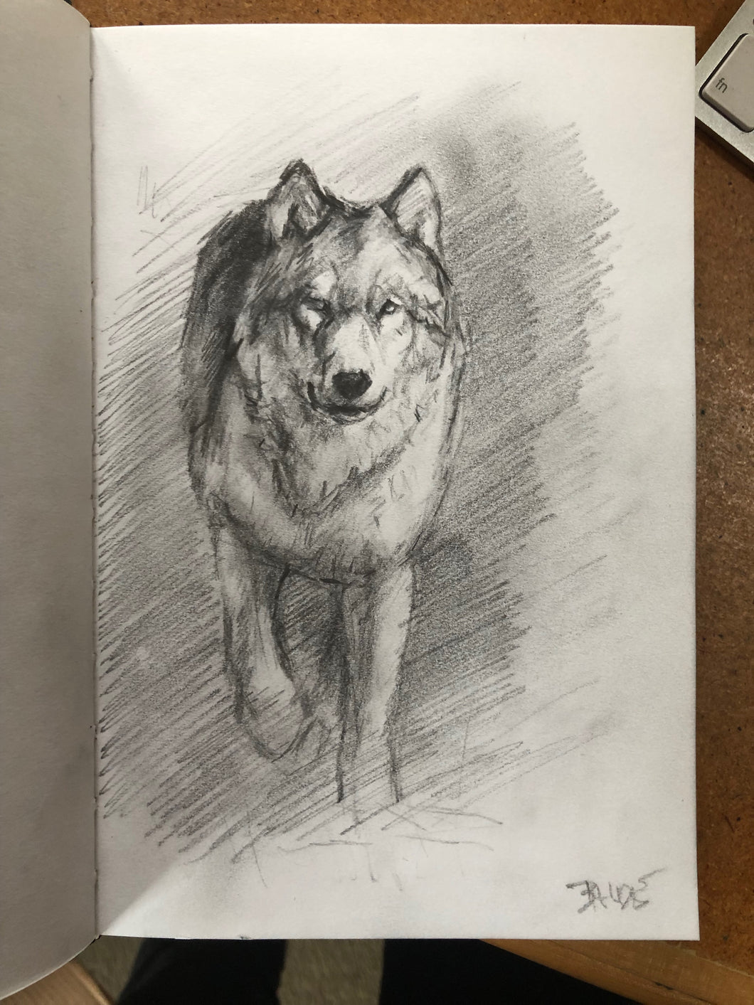 Wolf in motion sketch 7.5x5