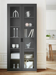 Snow F Glass Fronted Cabinet by Asplund
