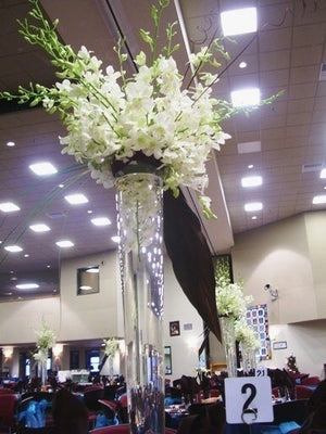 Victory Tall Clear Vases