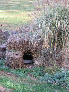 Shelters for Outside and Feral Cats