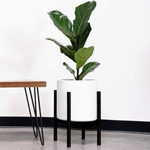 10.5  White Ceramic Planter &Amp; Black Wood Stand
