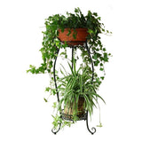 Dazone Demountable Metal 2 Tiers Plant Rack Indoor Floor Model Plant Stand (Black)