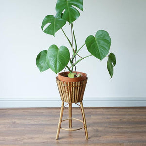Bamboo Freestanding Plant Pot/Stand