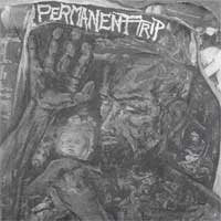 PERMANENT TRIP self titled 7""