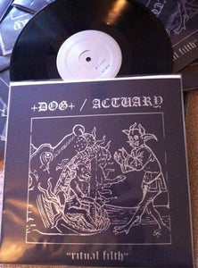 +DOG+ / ACTUARY split 10""