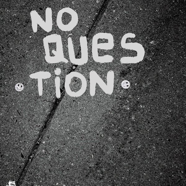 NO QUESTION self titled 7