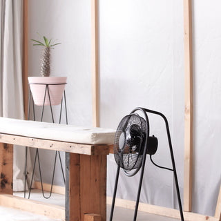 Launching the Breezy Floor Fan