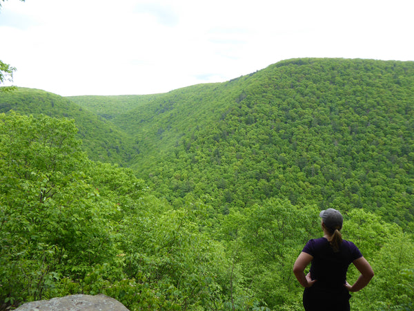 "Golden Eagle Trail Plus: Your guide to ""PA's Best Day Hike"" & some fantastic alternate routes!"