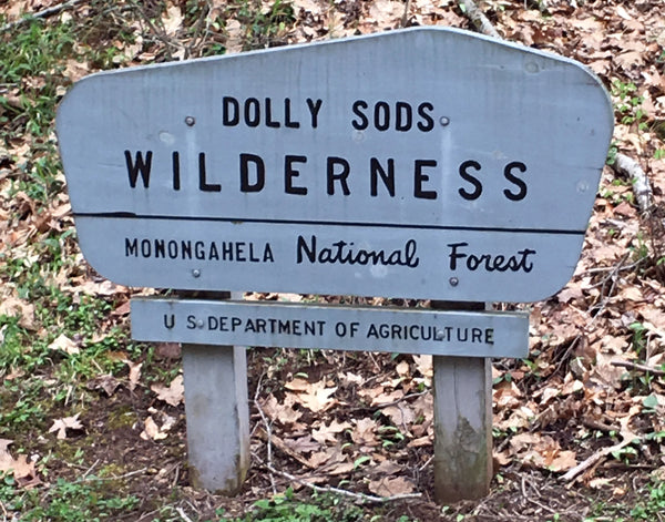 Dolly Sods Monongahela Red Creek hiking overlanding sunrise West Virginia WV
