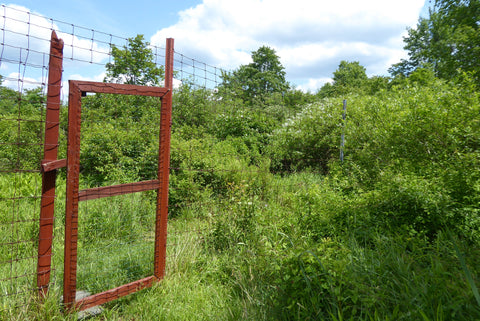 Blueberry Trail Gate: Quehanna PA