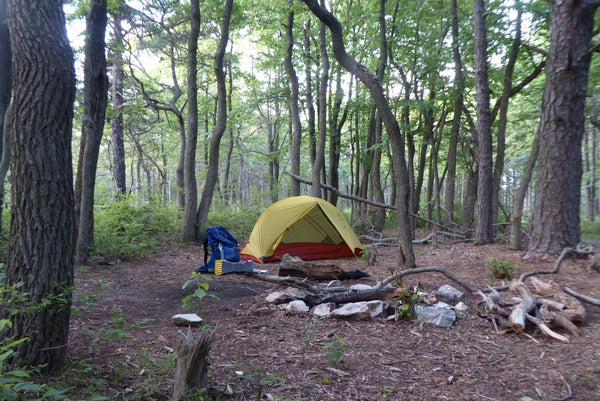 Michaux State Forest Camping