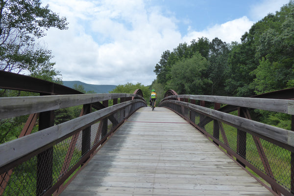 Pine Creek Rail Trail Bridge