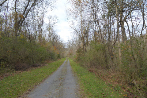 Lower Rail Trail, gravel ride, rails to trails