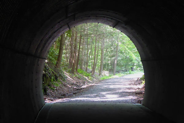 Paddy Mountain Railroad Tunnel Poe Paddy State Park Bald Eagle State Forest PA