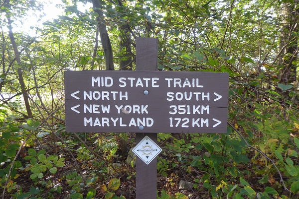 Mid State Trail Rothrock State Forest PA